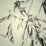 New Holland Honeyeater- On the lookout Ltd Ed Print