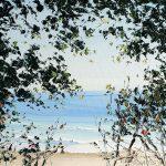 Diggers Beach Through The Trees
