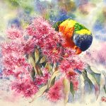 Rainbow Lorikeet and Pink Gum Blossoms Original Australian Native Flowers