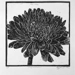 Chrysanthemum Flower – Ltd Ed Print