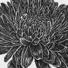 Chrysanthenum Lino Print Detail 2