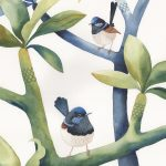 Fairy Wrens Frangipanis and Foliage No3