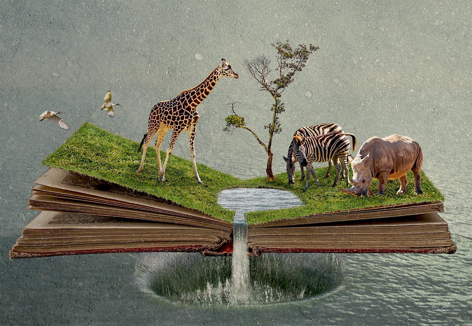 224 Noah's Book 30 Layers