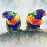 It's just a sun shower, Rainbow Lorikeets