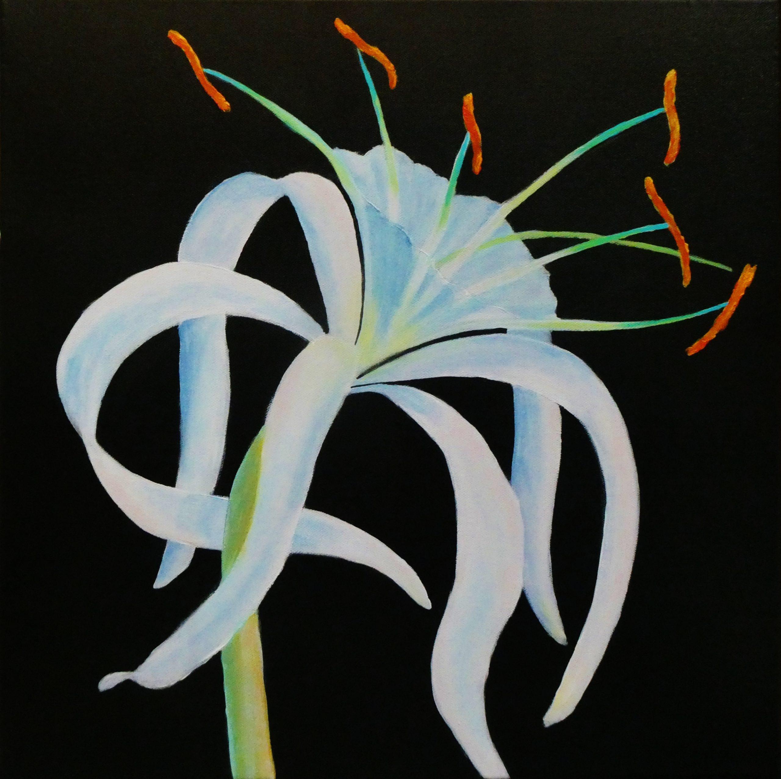 Clare Riddington Jones, Spider Lily, Acrylic On Canvas, 45cm X 45cm