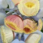 Yellow and Pink Blossom by Gillian Murray Ltd Ed Print 2/100
