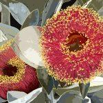 Red Blossom by Gillian Murray Ltd Ed Print 2/100