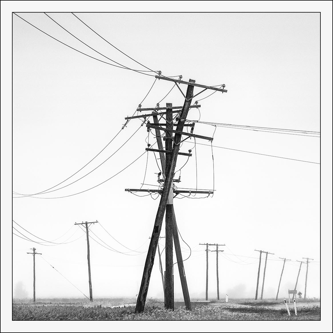 A Dance Of Powerlines Border