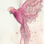 Flight of the Galah