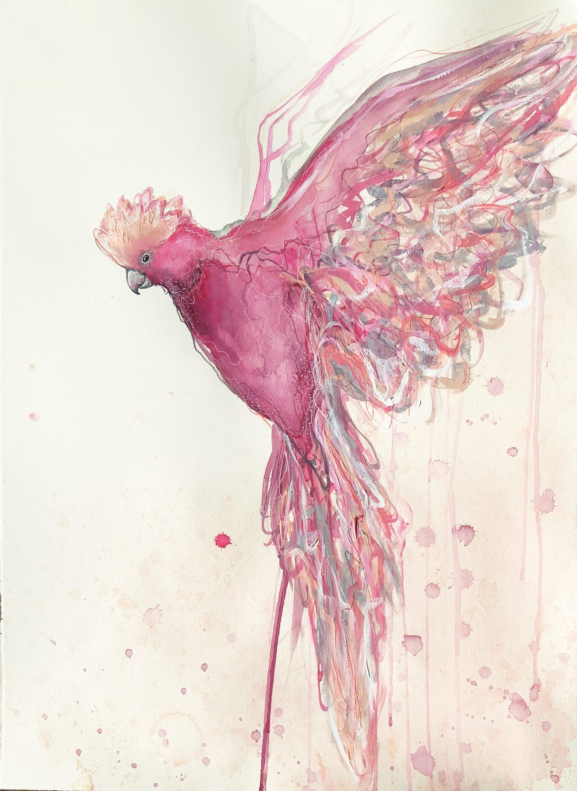 Artist Leni Kae Flight Of The Galah 56x76cm Jan2021 V2