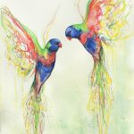 Rainbow Lorikeet Love