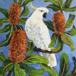 Cockatoo and Banksia