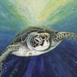 Cruising the EAC, green sea turtle Ltd Ed giclee print