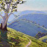 Hillside Gum near Mudgee