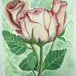 Three Valentine Roses