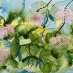 Pink Gum Flowers of Nature