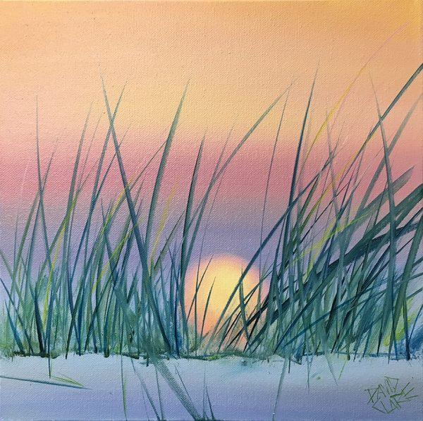 Sunset Through The Grass Lr