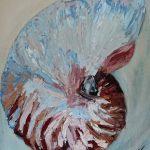 Adrift Nautilus