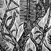 Wattle Bird Linocut Closeup 1
