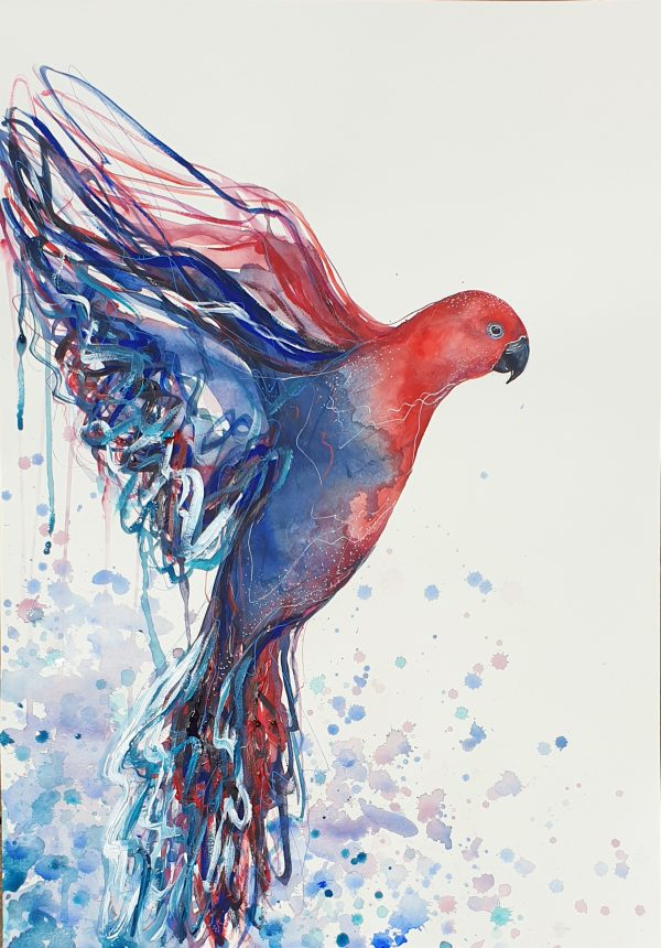 1. Sydney Artist Leni Kae Flight Of The Red Eclectus Bird Art Painting