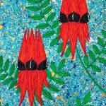 Flowers – Sturt Desert Pea – SOLD
