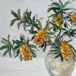 Banksias In A Pot