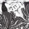 Bird On A Banksia Nicola Cowie Detail 2