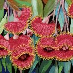 Caesia Blossom Ltd Ed Print