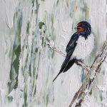 Swallow on Pale Eucalyptus