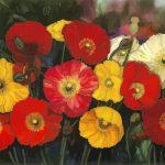 Field of poppies Ltd Ed Print