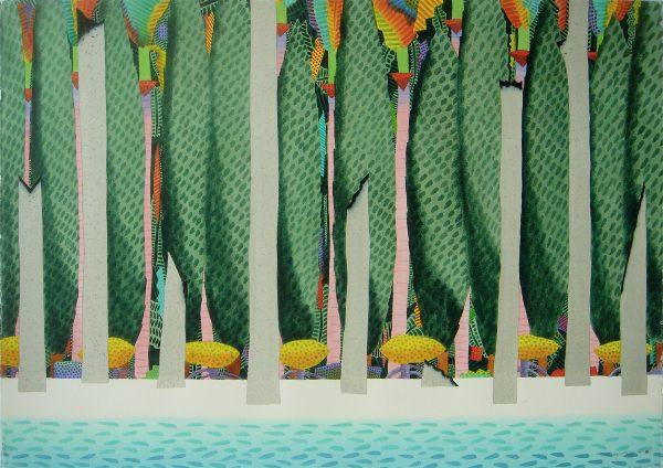 Rainforest To The Sea:daintree