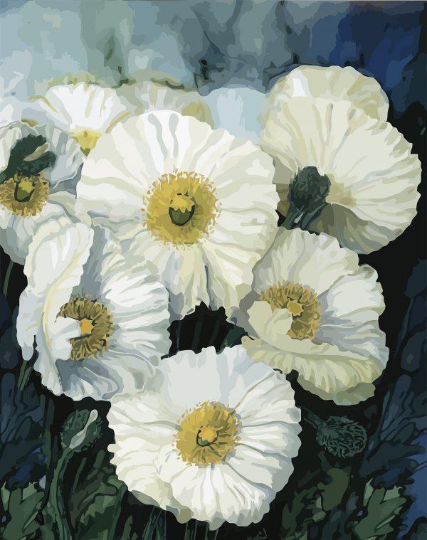 White Poppies 3 80x63