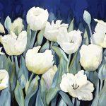 White tulips Ltd Ed Print