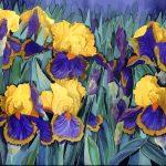 Yellow & Blue/Purple Iris Ltd Ed Print