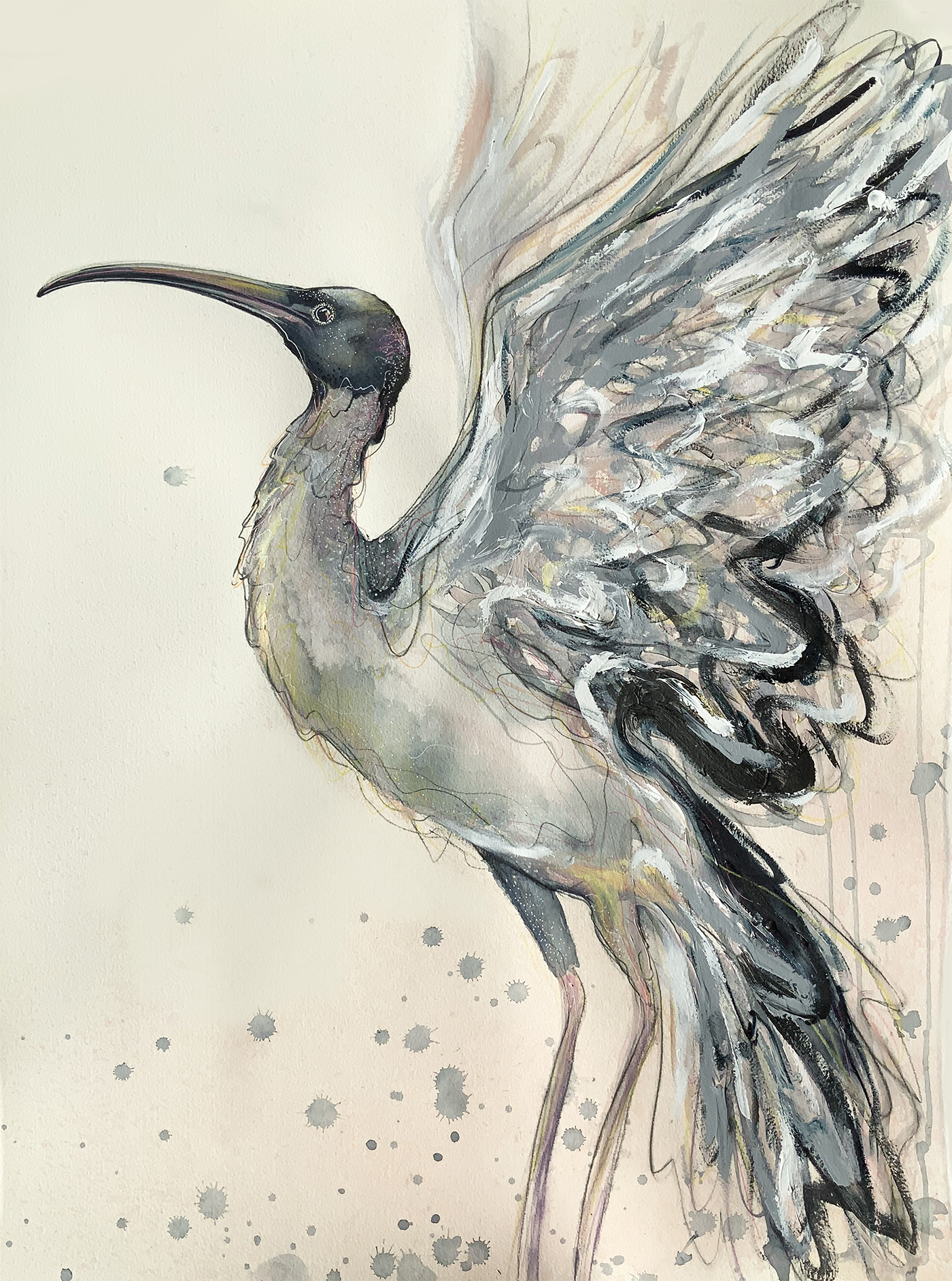 Artist Leni Kae Flight Of The Ibis 56x76cm 1500px