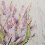 Blooming Protea 2