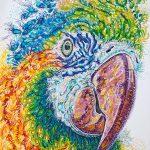 Maisie Macaw