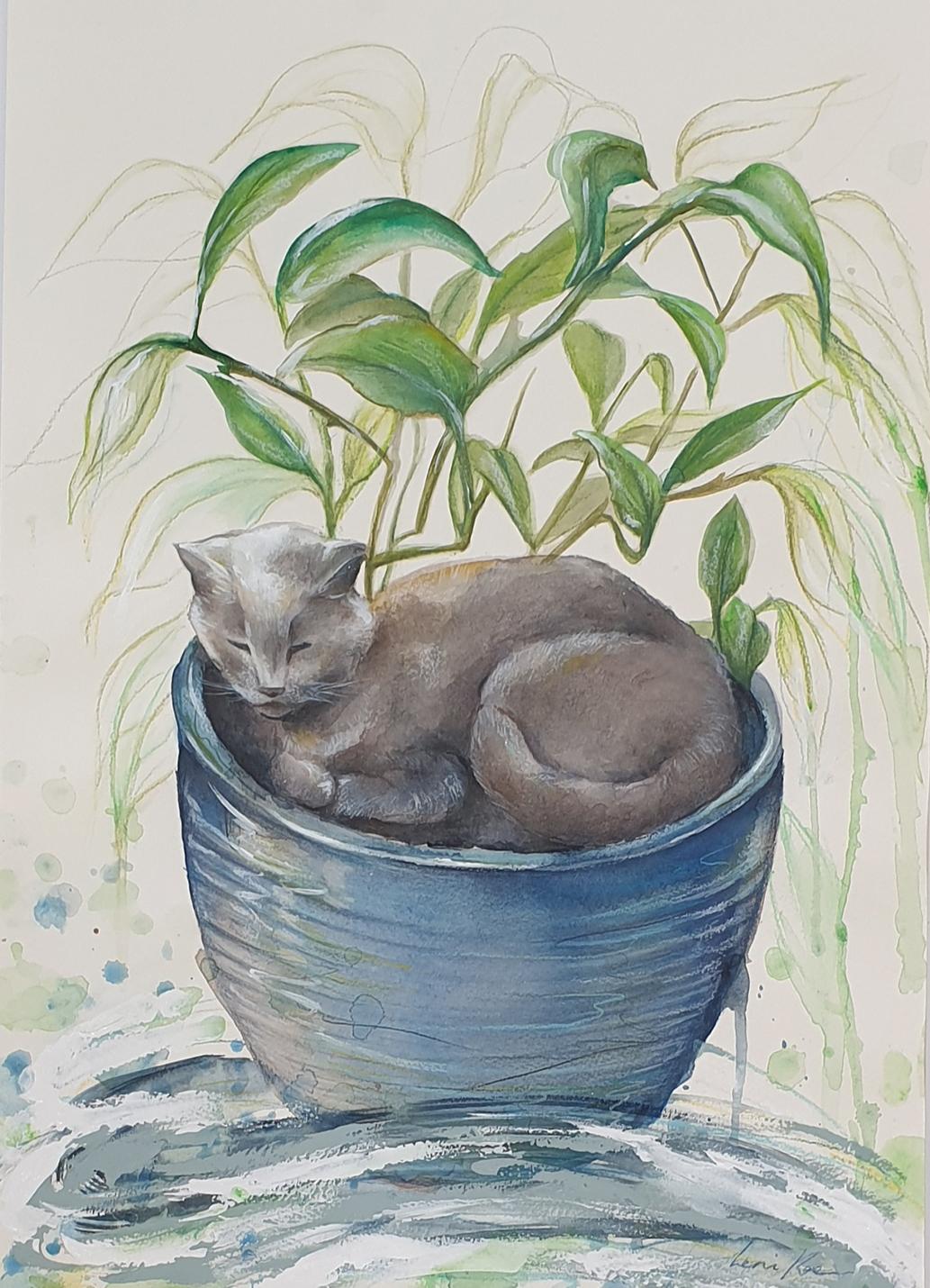 Sydney Artist Leni Kae Custom Cat Portrait Commission Art Gift