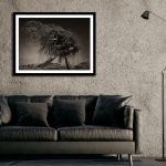 The Gnarled Tree – Ltd Ed Print