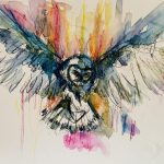 Colourful Owl