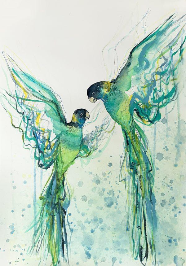 2a.sydney Artist Leni Kae Dance Of The Australian Ring Necks Watercolour Bird Painting