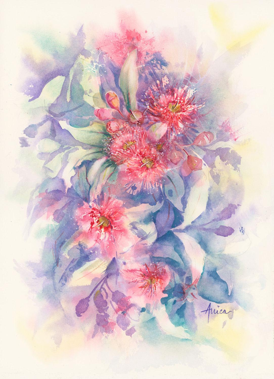Crimson Gum Blossoms