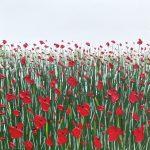 Poppies 09