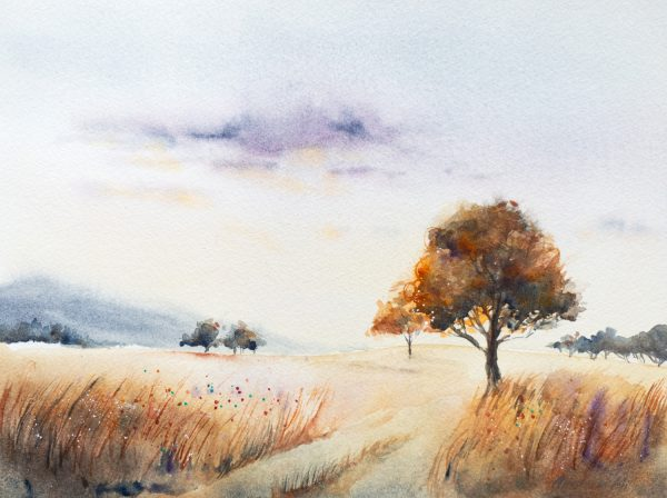 Img 1515 Late Summer Evening By Anastasia Mily 30 X 23