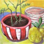 Still life red pot and quince