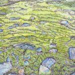 Moss and the Fullness of Life – Ltd Ed Print