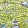 Moss And The Fullness Of Life Carollyne Smithson Crop 2