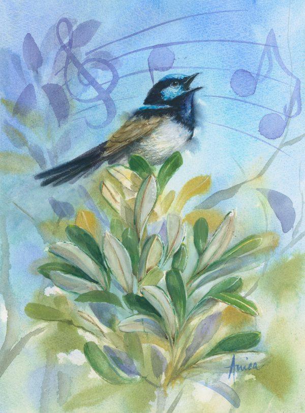 Singing Wren Upon The Banksia Al