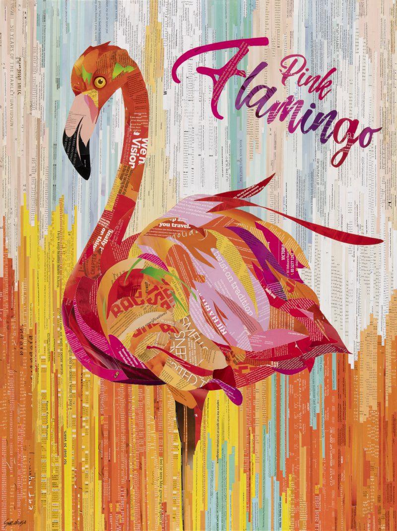 Sue Dowse Flamingo Primary 800x1070
