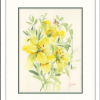 Yellow Lilies In White Fframe
